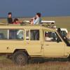 Cheetah and Friends in Kenya