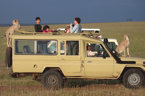 Cheetah and Friends in Kenya